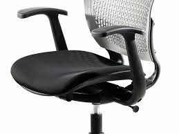 Office Chair  Ergonomic Leather Office Chair Exceptional - Ergonomic living room chair