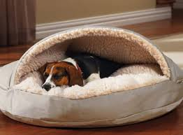 Hooded Dog Bed Diy Dog Bed Project How To Make A Homemade Dog Bed