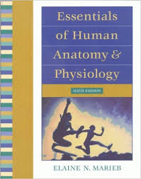 Saladin Anatomy And Physiology 6th Edition Online Essentials Of Anatomy And Physiology 6th Edition Online Cool Books