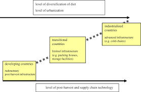 food waste within food supply chains quantification and potential