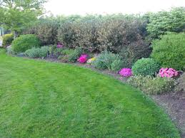 65 best berm and mound landscaping images on pinterest gardens