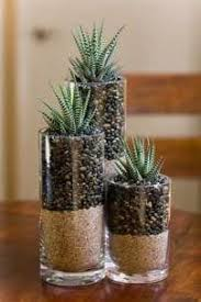 Decorative Glass Stones For Vase Best 25 Succulents In Glass Ideas On Pinterest Succulent