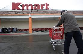kmart offers lifetime guarantee on plants but take a look at fine