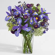 iris flowers iris flower arrangements iris flowers online proflowers
