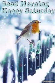 winter morning happy saturday quote pictures photos and
