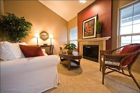 delightful decoration living room paint ideas with accent wall