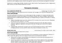 Real Estate Agent Job Description For Resume Real Estate Investor Resume Fred Resumes