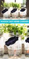 best 25 indoor herbs ideas on pinterest herb garden indoor