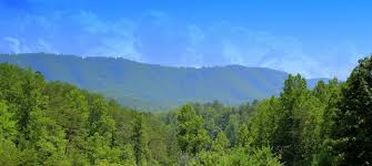 Tennessee Forest images Vrbo sherwood forest resort pigeon forge vacation rentals jpg