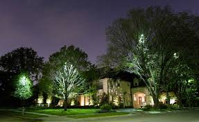 Landscape Lighting Plano Moonlighting Tree Lighting Downlights Lights And Outdoor Lighting