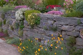 Rock Garden Society Garden Design Garden Design With Favorite Rock Garden Plants With