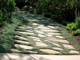 Garden Decor With Stones Outdoor U0026 Garden Awesome Landscape Decor With Dymondia Margaretae