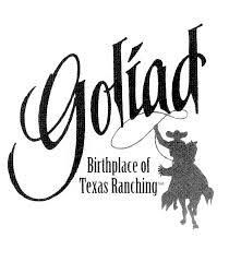 Black And White Texas Flag Goliad Texas