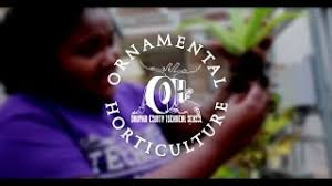ornamental horticulture definition mp4 hd