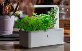 indoor gardening kits vegetables gardening ideas