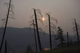 Wildfire Kootenays by B C Wildfire Status Monday Williams Lake Residents Get Ready To