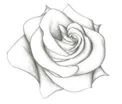 simple drawings with pencil simple flower drawings in pencil
