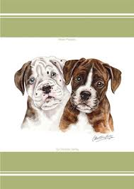 boxer dog doormat boxer dog boston waggy dogz cushion a bentley cushions