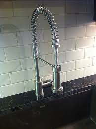 Blanco Kitchen Faucets Canada Blanco Diva Kitchen Faucet Unusual In Stainless Steel Shannon Darl