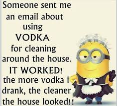 House Cleaning Memes - funny quotes about cleaning house tolg jcmanagement co