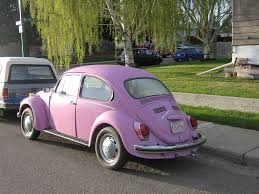 pink volkswagen beetle pink vw beetle pink volkswagen beetle with vanity plate ku
