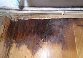 water damage to wood floors and laminate floors enviral restoration