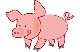 control pigs coach andrea
