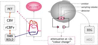 frontiers from acoustic segmentation to language processing