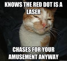 Cute Kitty Memes - no pain in the butt cat memes 20 pics izismile com