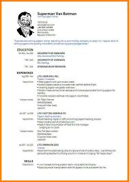 Basic Resume Format Examples by Resume Cv Format Basic Resume Template Basic Resume Template U2013 51