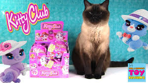 Where To Buy Blind Boxes Kitty Club Full Box Surprise Blind Bag Toy Opening With Simon