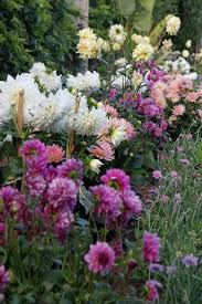 130 best cutting gardens images on pinterest plants flowers and