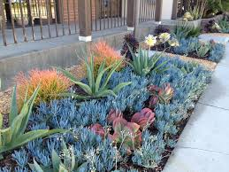 california native plant garden design small rock garden ideas idolza