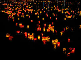 free photo lights candles floating candles free image on