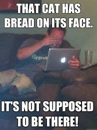Cat In Bread Meme - inbred cat by greentree meme center