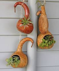 25 unique gourd crafts ideas on gourds gourd and