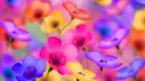 Flowers Same Day Delivery Flowers Same Day Delivery Wallpaper