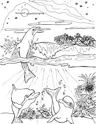 three dolphins frolicking near island coloring page mermaid