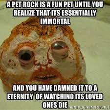 Pet Rock Meme - timmy the pet rock meme generator
