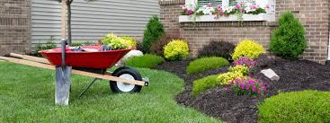 cura giardino consigli utili per la gestione tuo giardino giambenini