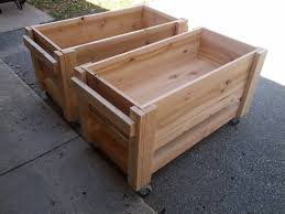 some raised planter boxes on casters i built to grow some