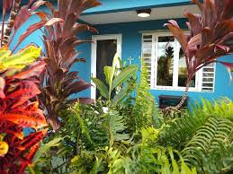 Vacation Rental Puerto Rico 7 Best Puerto Rico Vacation Houses Images On Pinterest Rincon
