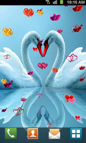 the love wallpapers love birds live wallpaper android apps on google play