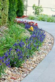ideas for front yard landscaping a before and after love our