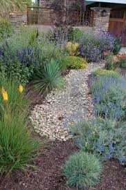 Landscape Design Backyard by I Love This Drought Tolerate Native Plant Landscaping So Much