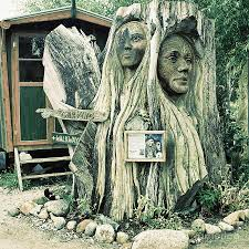 woodcarved faces on tree trunk in new zealand photograph by trude