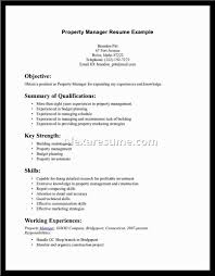career summary on resume best resume summary statement examples template best resume summary statement examples 62 in best professional