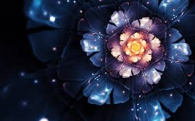 Blue Flower Backgrounds - 50 beautiful flower wallpaper images for download