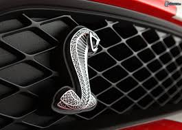 logo ford mustang ford mustang shelby gt500