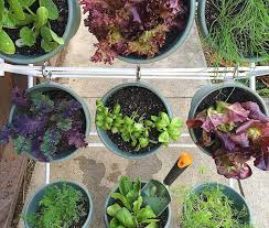 diy vertical herb garden for small spaces container gardening